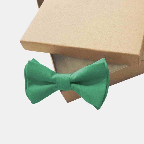 Laço de pescoço verde sage